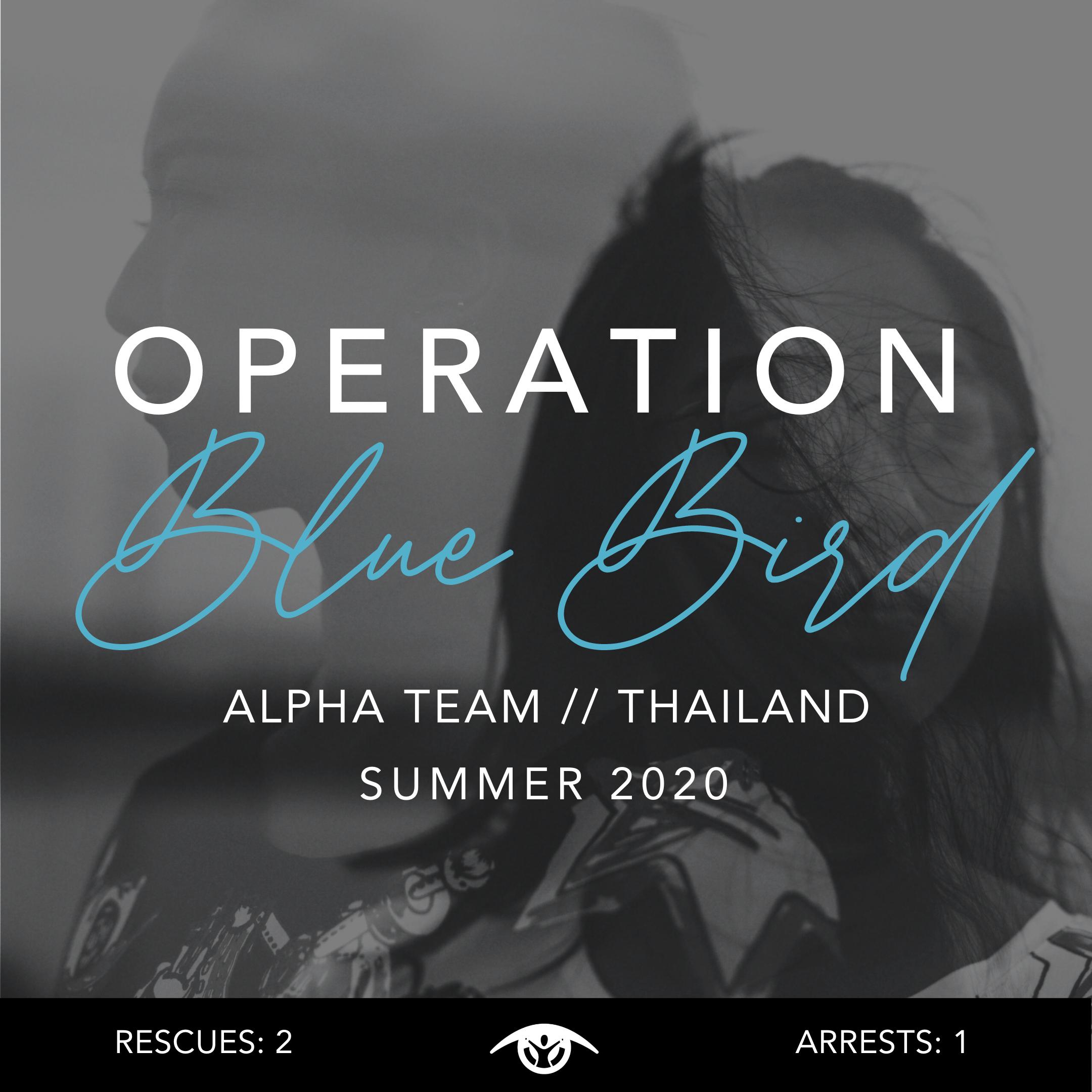 Operation Bluebird