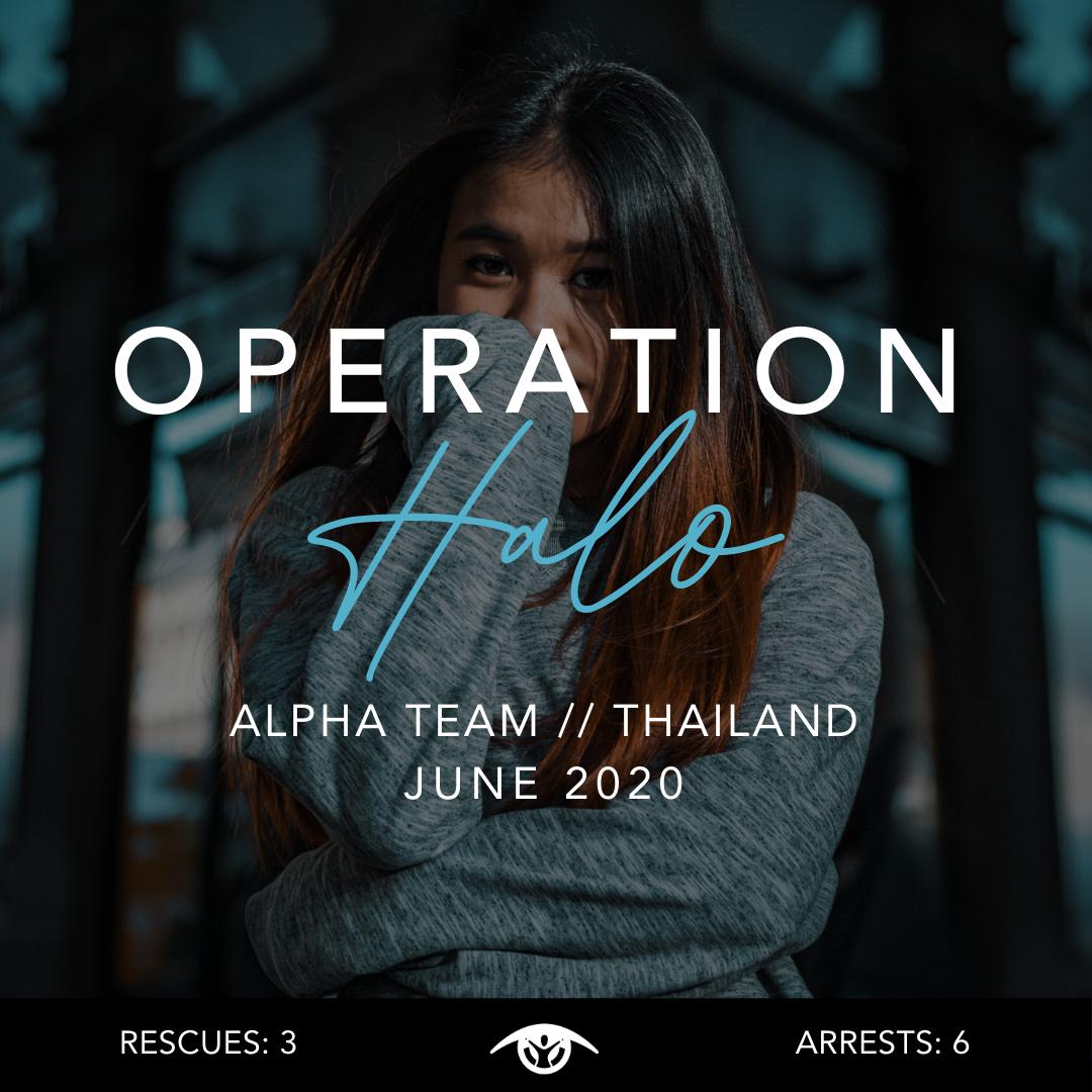 Operation Halo